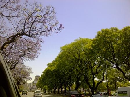 Buenos Aires im Frühling 10