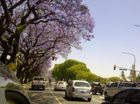 Buenos Aires im Frühling 11
