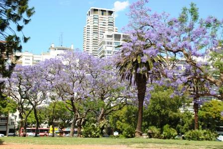 Buenos Aires im Frühling 2