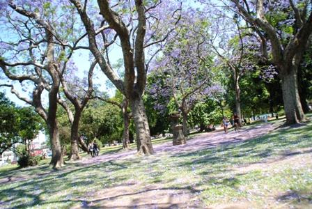 Buenos Aires im Frühling 7