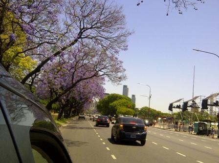 Buenos Aires im Frühling 8