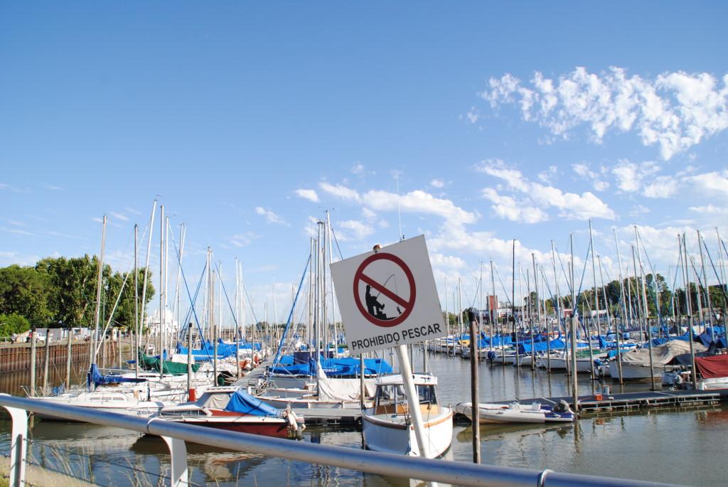 Yachthafen Olivos